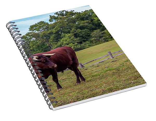 Bull In Field Spiral Notebook