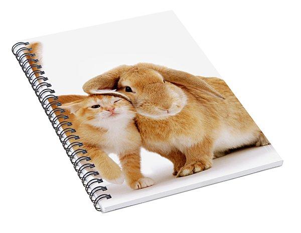 Bunny Rubbing Spiral Notebook