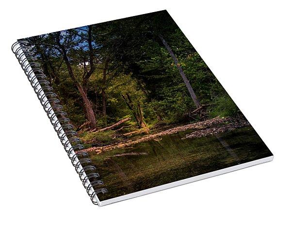 Busiek State Forest Spiral Notebook