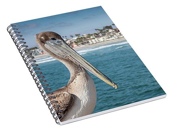 California Pelican Spiral Notebook