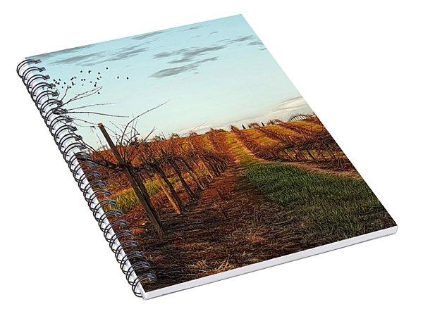 California Vineyard In Winter Spiral Notebook