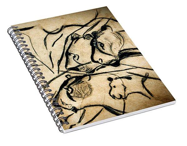 Chauvet Cave Lions Spiral Notebook