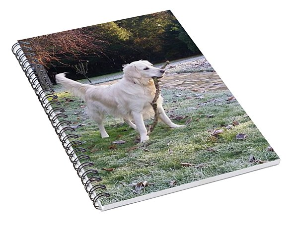 Frosty Fun Spiral Notebook