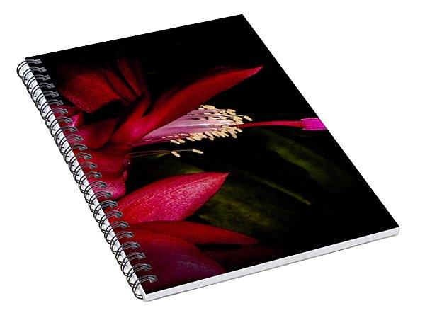 Christmas Beauty Spiral Notebook