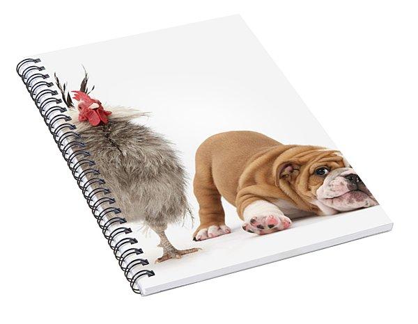 Cock N Bull Spiral Notebook