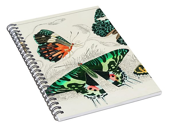 Collection Of Various Butterflies Spiral Notebook