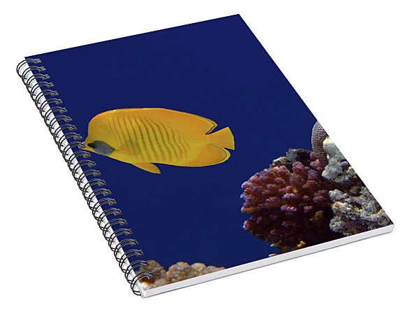 Colorful Coralreef Spiral Notebook