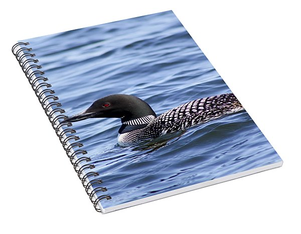 Common Loon Spiral Notebook