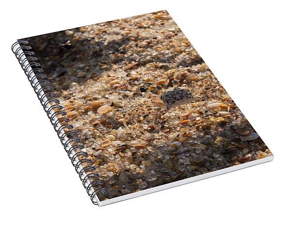 Crab Camoflage Spiral Notebook