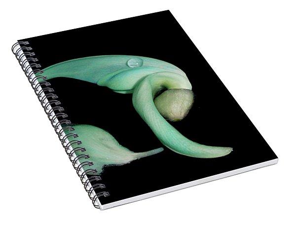 Curled Together Spiral Notebook
