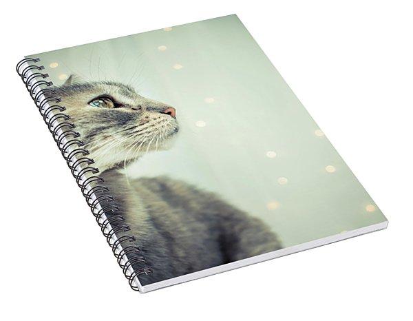 Dapple Spiral Notebook