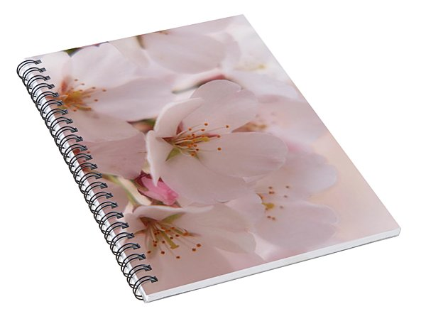 Delicate Spring Blooms Spiral Notebook