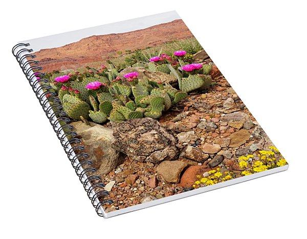 Desert Cactus In Bloom Spiral Notebook
