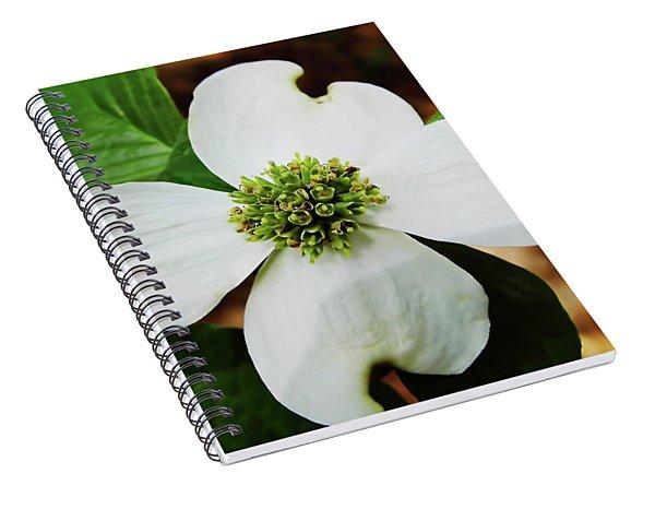 Dogwood Blossom Spiral Notebook