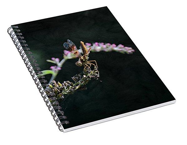 Dragonfly II Spiral Notebook