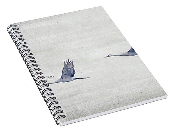 Dream Sequence Spiral Notebook