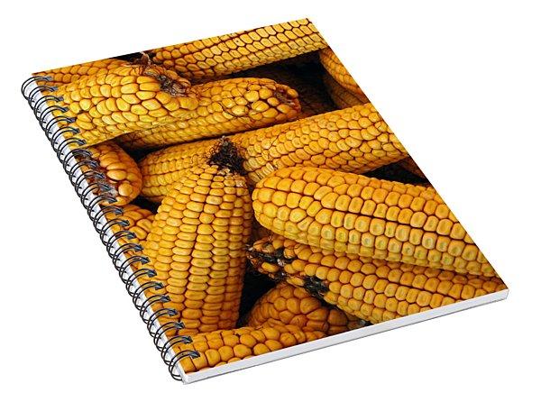 Dried Corn Cobs Spiral Notebook