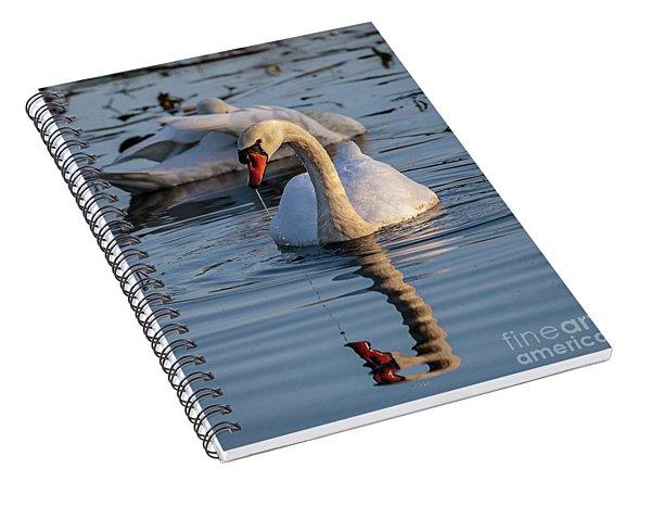 A Swan Spiral Notebook