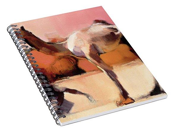 dsu and Said - Rann of Kutch  Spiral Notebook