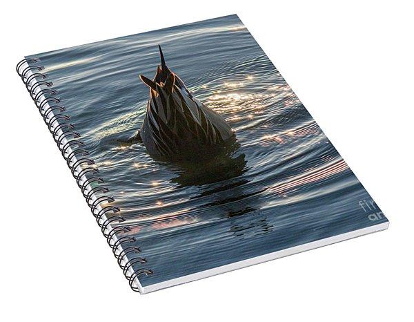 Duck Tail Spiral Notebook