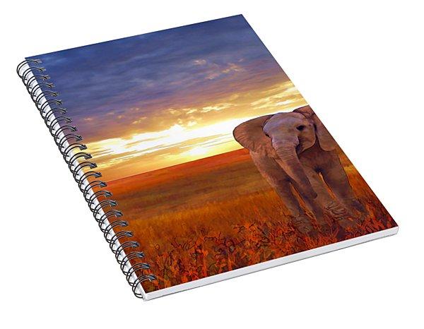 Elephant Baby Spiral Notebook