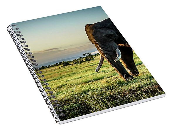 Elephant Near Mt Kenya Spiral Notebook