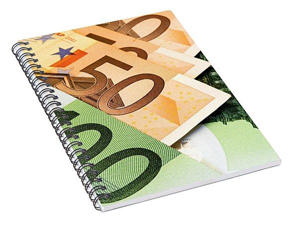Euro Banknotes Spiral Notebook