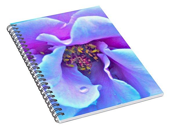 Exotic Dancer Spiral Notebook