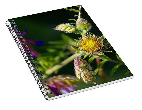 Eye Candy From The Garden Spiral Notebook