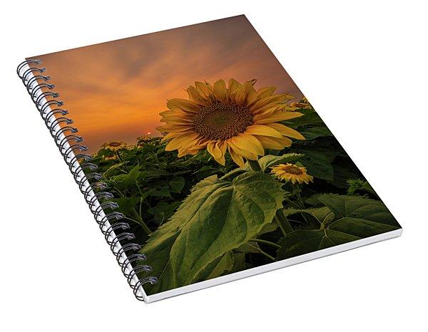 Eye Of The Beholder  Spiral Notebook