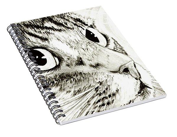Fairy Light Tabby Cat Drawing Spiral Notebook