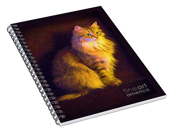 Fireside Feline Spiral Notebook