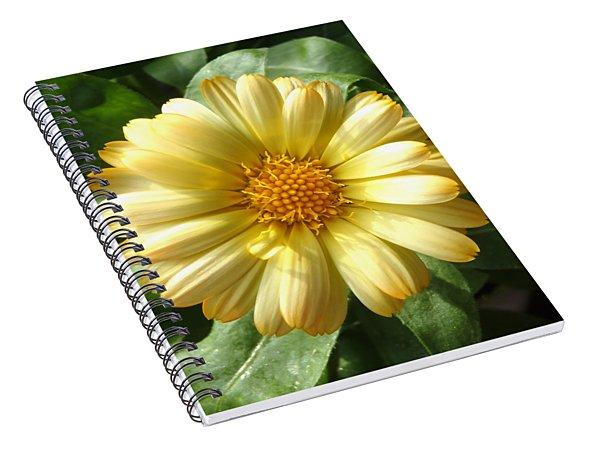 First Sign Of Summer Spiral Notebook