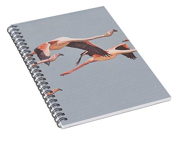 Flamingos In Flight Spiral Notebook