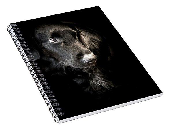 Flat Coated Retriever Spiral Notebook