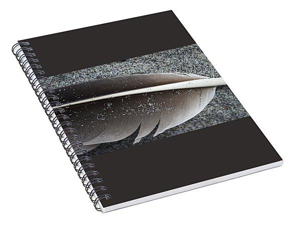 Flight Feather Spiral Notebook