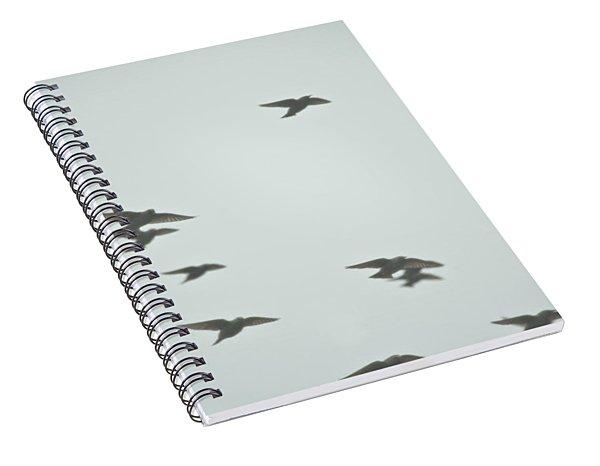 Flight Spiral Notebook