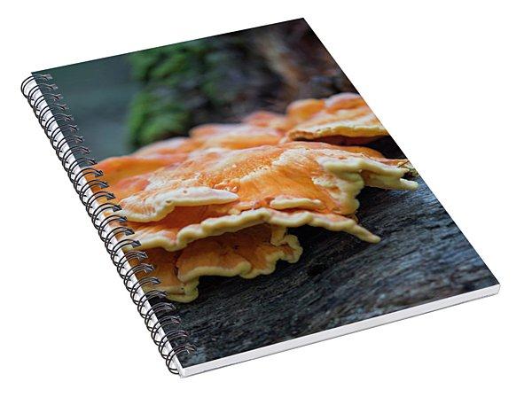 Flowing Fungus Spiral Notebook