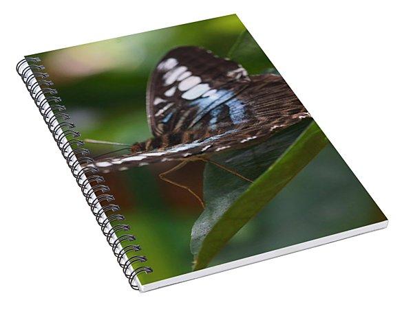 Flying High 3 Spiral Notebook