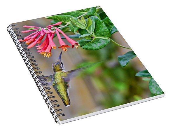 Flying Jewel Spiral Notebook