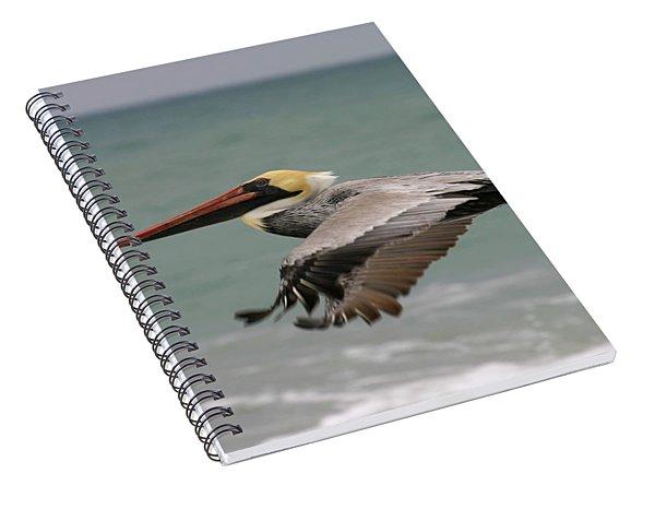 Flying Pelican Spiral Notebook