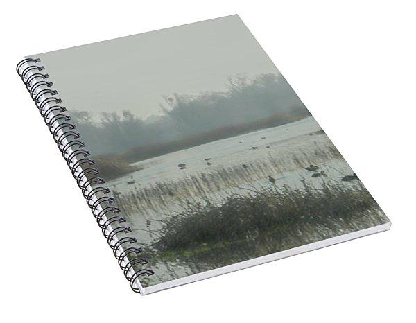 Foggy Wetlands Spiral Notebook