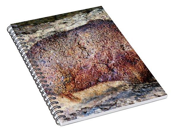 Font De Gaume Bison Spiral Notebook
