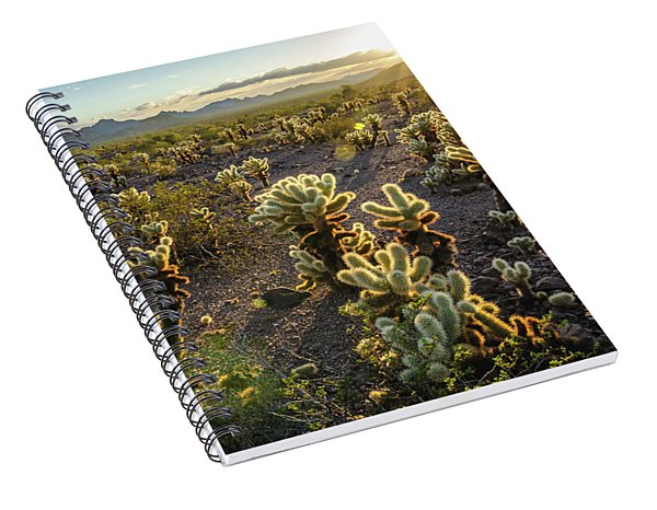 Sea Of Cholla Spiral Notebook