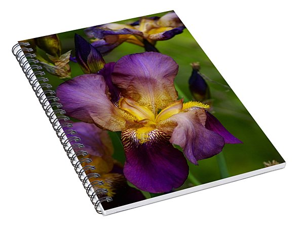 For The Love Of Iris Spiral Notebook