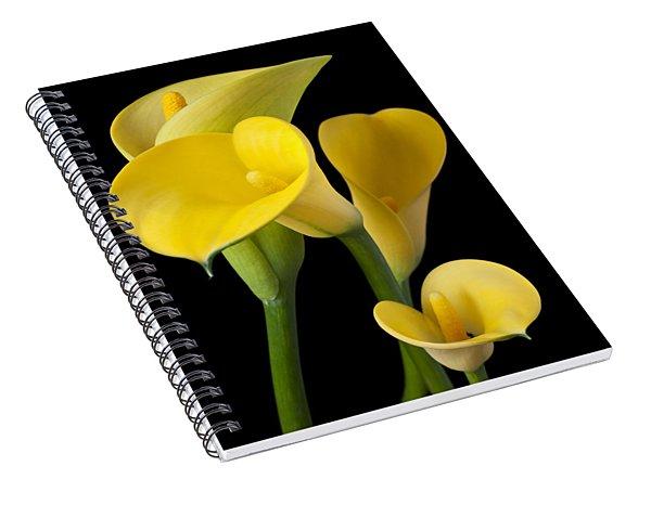 Four Yellow Calla Lilies Spiral Notebook