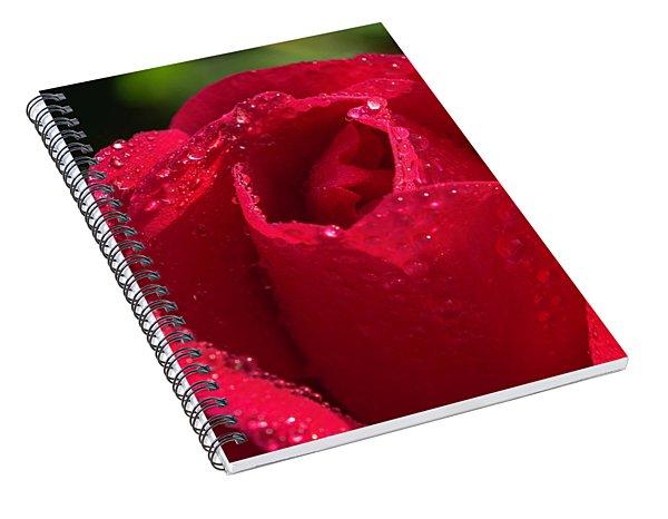 Fresh Rose Spiral Notebook