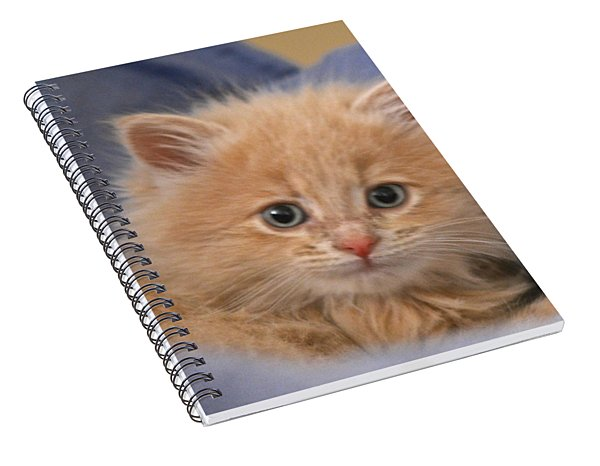 Freya #3 Spiral Notebook