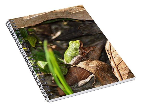 Froggy  Spiral Notebook