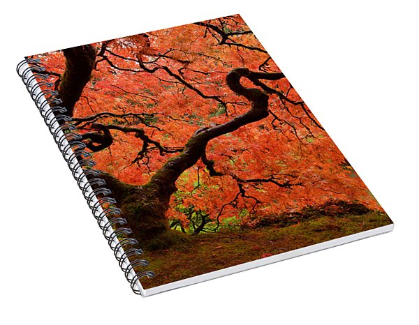 Fuego Spiral Notebook